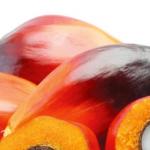 Oli e grassi utilizzati per diversi scopi