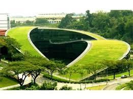 Regole per la progettazione dei tetti verdi