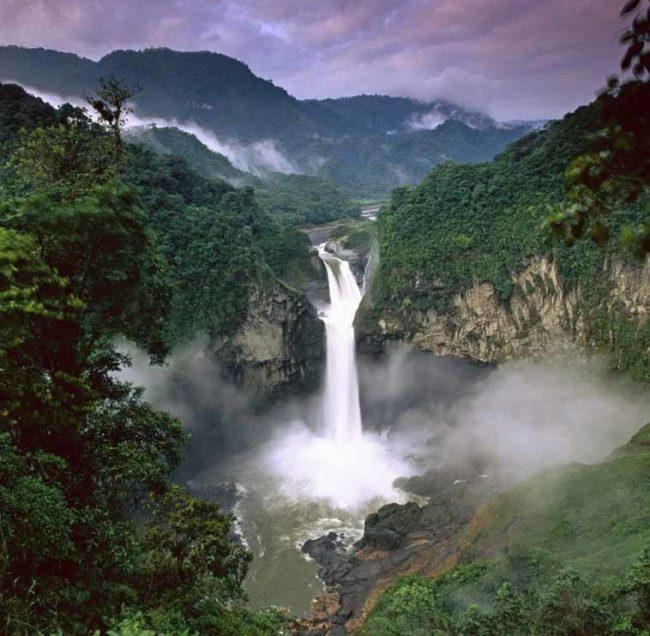 Il più grande progetto di riforestazione tropicale