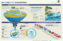 Mediterraneo, un mare di ricchezza
