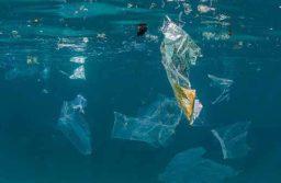 Stop alle Plastiche