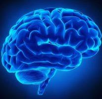 L'inquinamento atmosferico aumenta il rischio di demenza e indebolisce la memoria